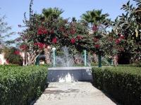 Im Garten des Al Mashrabia