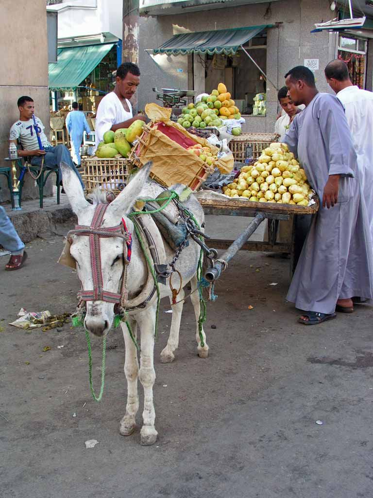 Assuan, Straßenhändler