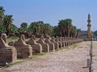 Luxor, vor dem Luxor Tempel