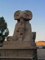 Luxor, im Karnak Tempel