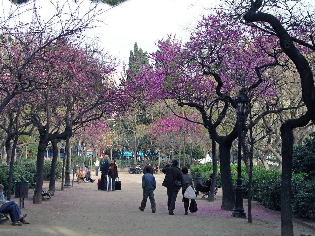 Barcelona, Park bei der Sagrada Família
