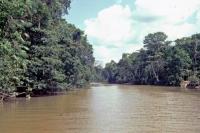 In der Amazonasmündung nahe Belém
