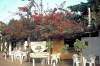 Praia do Forte, Tango Café