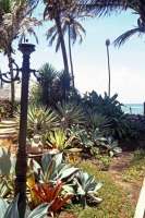 Pousada Praia do Forte, Gartenanlage