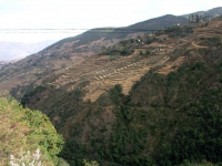 Shanglongwu, Reisterrassen