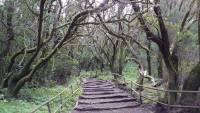 La Gomera, Naturpark Laguna Grande