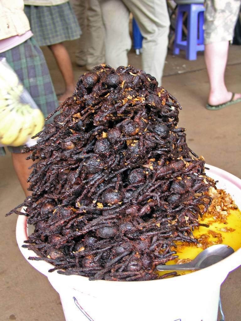 Kâmpóng Cham, Markt, gegrillte Vogelspinnen
