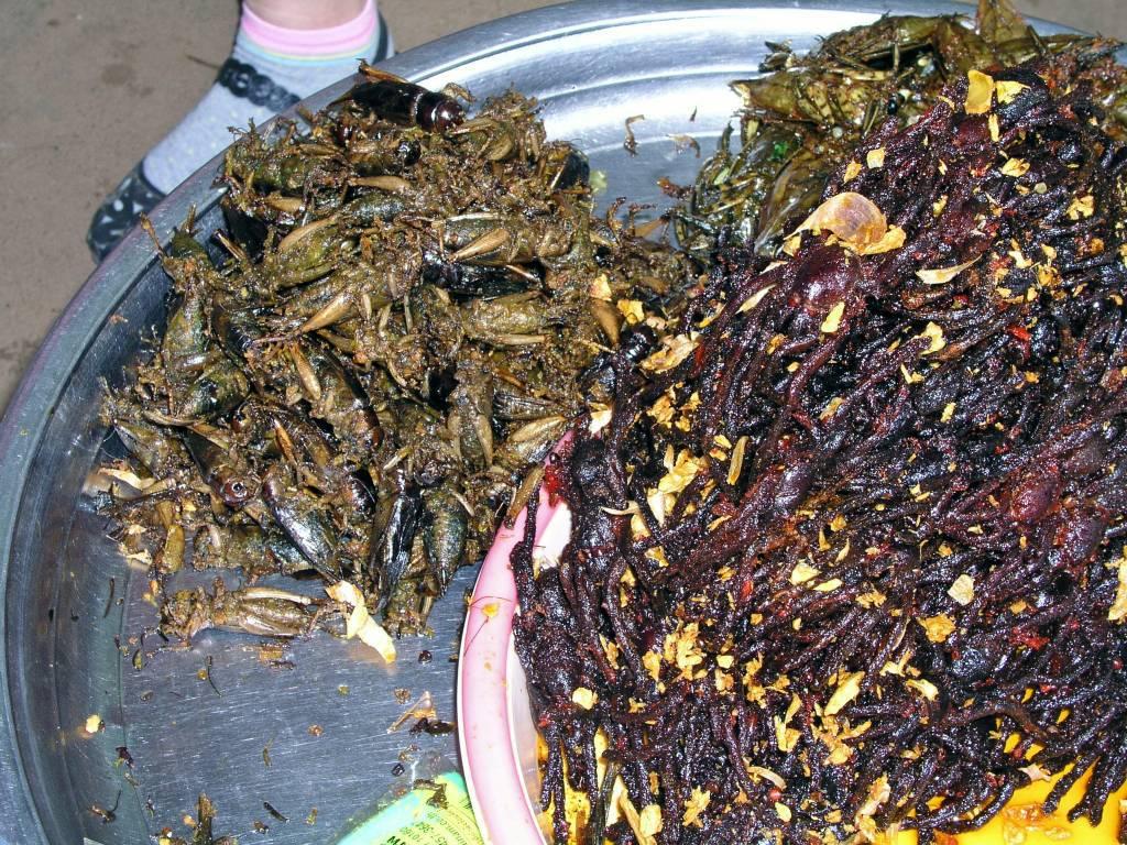 Kâmpóng Cham, Markt, gegrillte Heuschrecken und Vogelspinnen