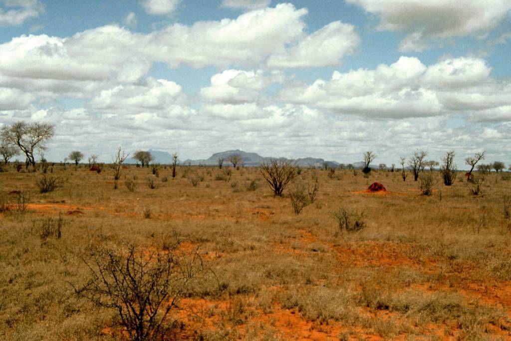 Tsavo Nationalpark, Landschaft