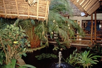 Coral Beach Hotel, Außenanlage
