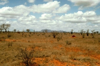Tsavo Nationalpark, Landschaft