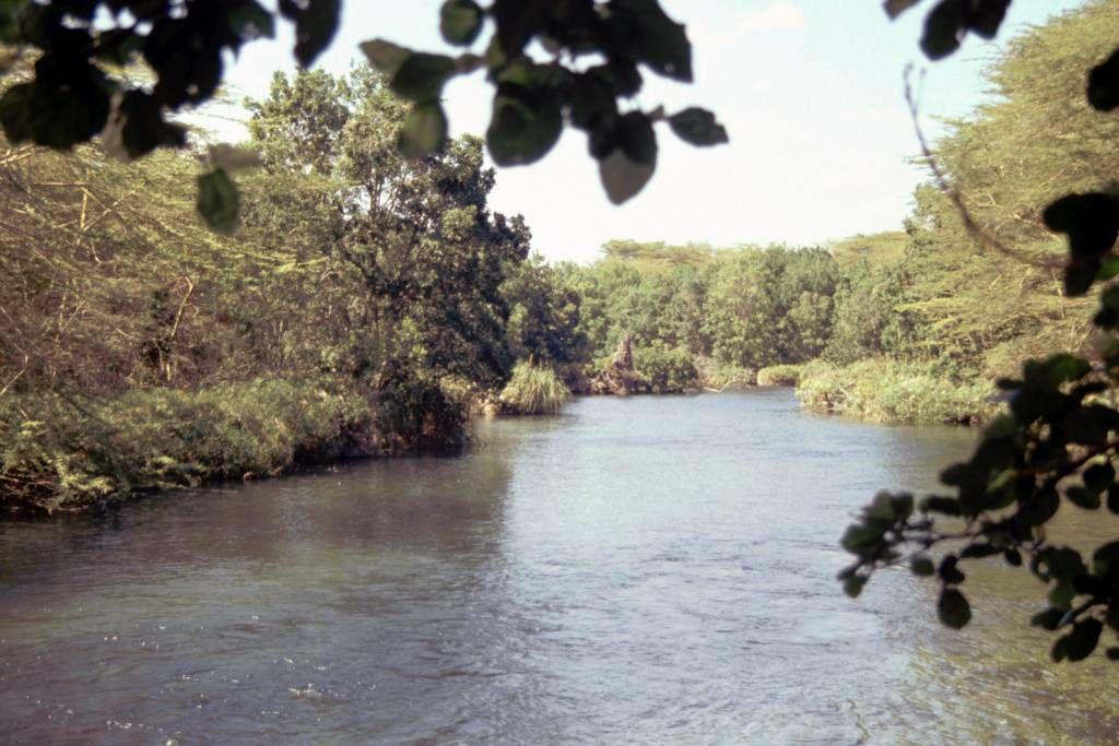 Tsavo West Nationalpark, Abfluss der Mzima Quelle