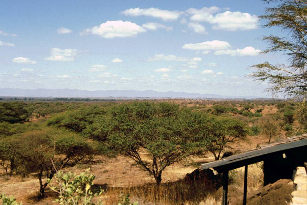 Amboseli Nationalpark, Kilamjaro Buffalo Lodge, Aussicht