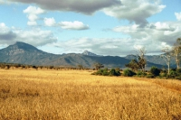 Taita Hills, Landschaft