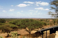 Amboseli Nationalpark, Kilamjaro Buffalo Lodge, Aussicht