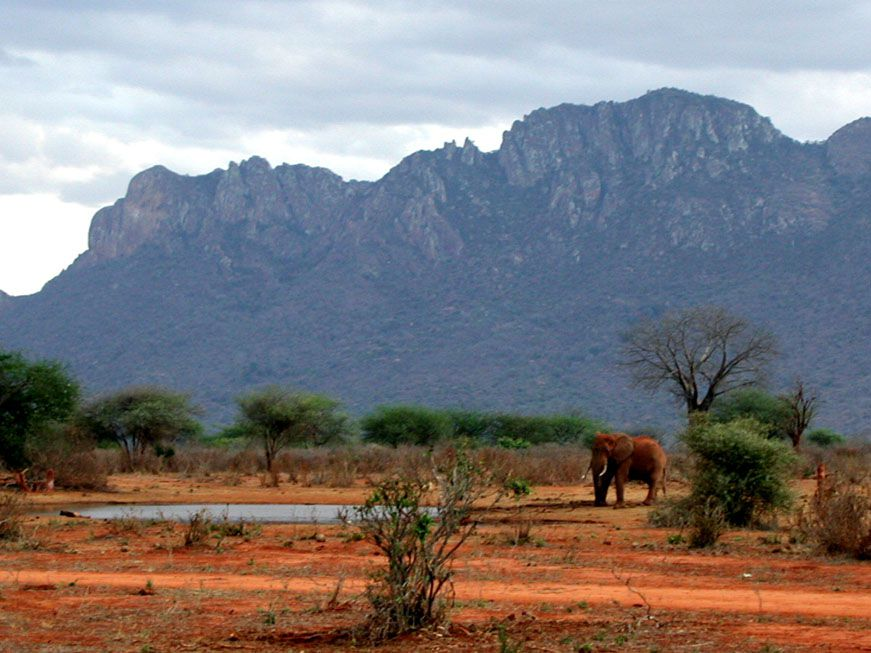 Wasserloch in Tsavo West