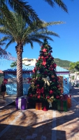 Sint Maarten, Philipsburg, Weihnachtsdekoration