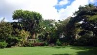 Britische Jungferninseln, Road Town, Botanischer Garten