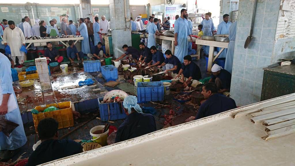 Fujairah Fischmarkt