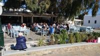 Mykonos, Restaurant To Steki Tou Proedrou