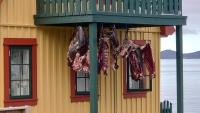 Grönland, Nuuk, Gebäude, Trocknung von Robbenfleisch