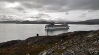 Grönland, Qaqortoq, MSC Orchestra vor Anker