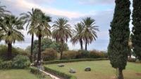Berg der Seligpreisung nördlich von Kafarnaum