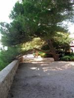 Insel Krk, Krk, Uferpromenade