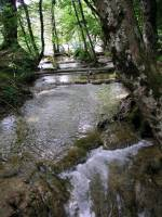 Kroatien, Nationalpark Plitvicer Seen