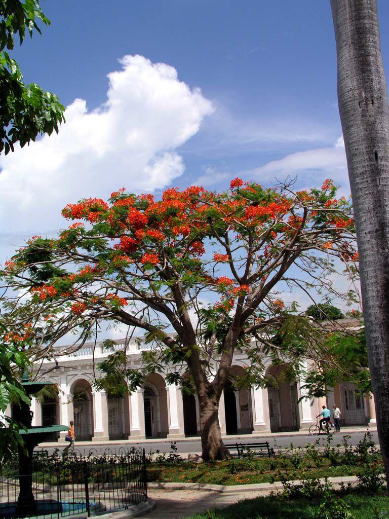 Am Parque Martí in Cienfuegos