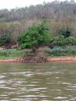 Ban Dan, Fahrt auf dem Mekong