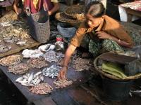 Sittwe, Fischverkauf auf dem Markt