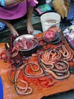Yangon, Fische auf dem Chinesischen Markt