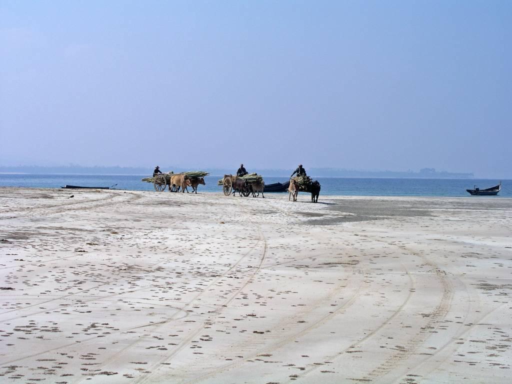 Ngwe Saung, Bambustransport am Strand