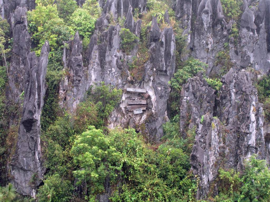 Lumiang Höhle, Holzsärge