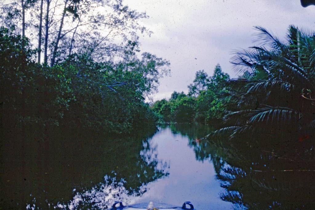 Bentota Fluss, Landschaft