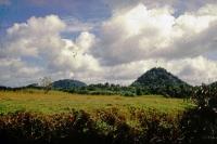 "Ausflug zum ""Little Adams Peak"", Landschaft"