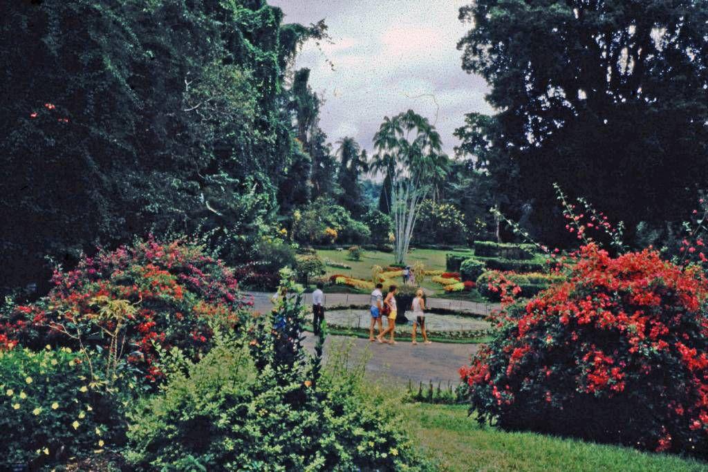 Kandy, Paradeniya Botanical Gardens