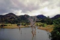 Landschaft auf dem Weg nach Sigiriya