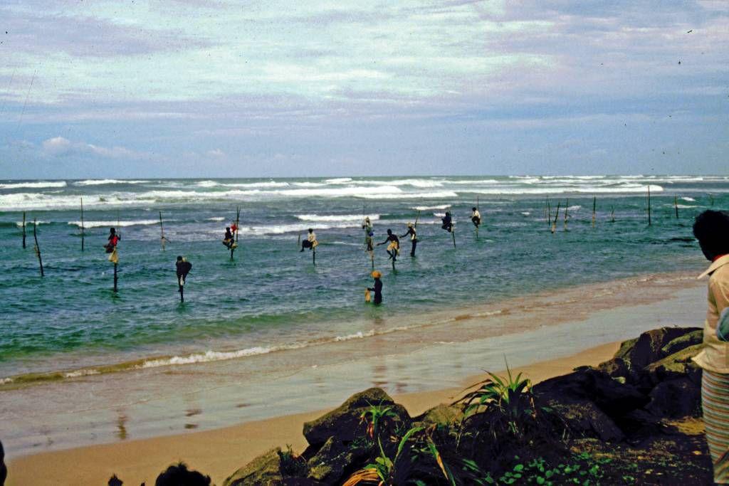 an der Strecke von Hikkaduwa über Galle, Weligama, Ella nach Nuwara Eliya, Stelzenfischer südlich Koggala