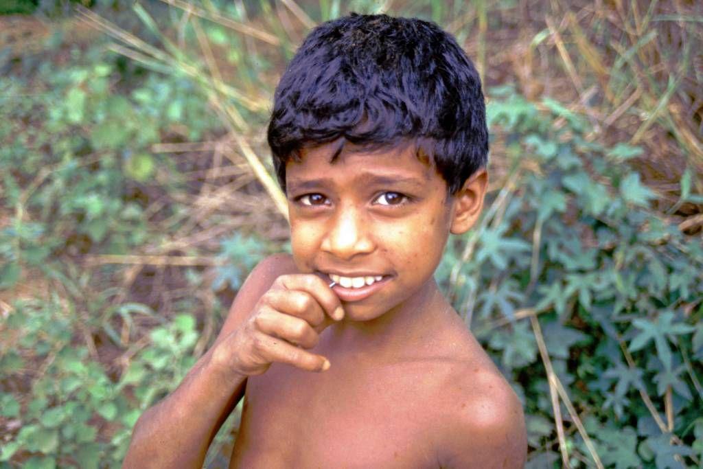 Pitawala, ein junger Begleiter