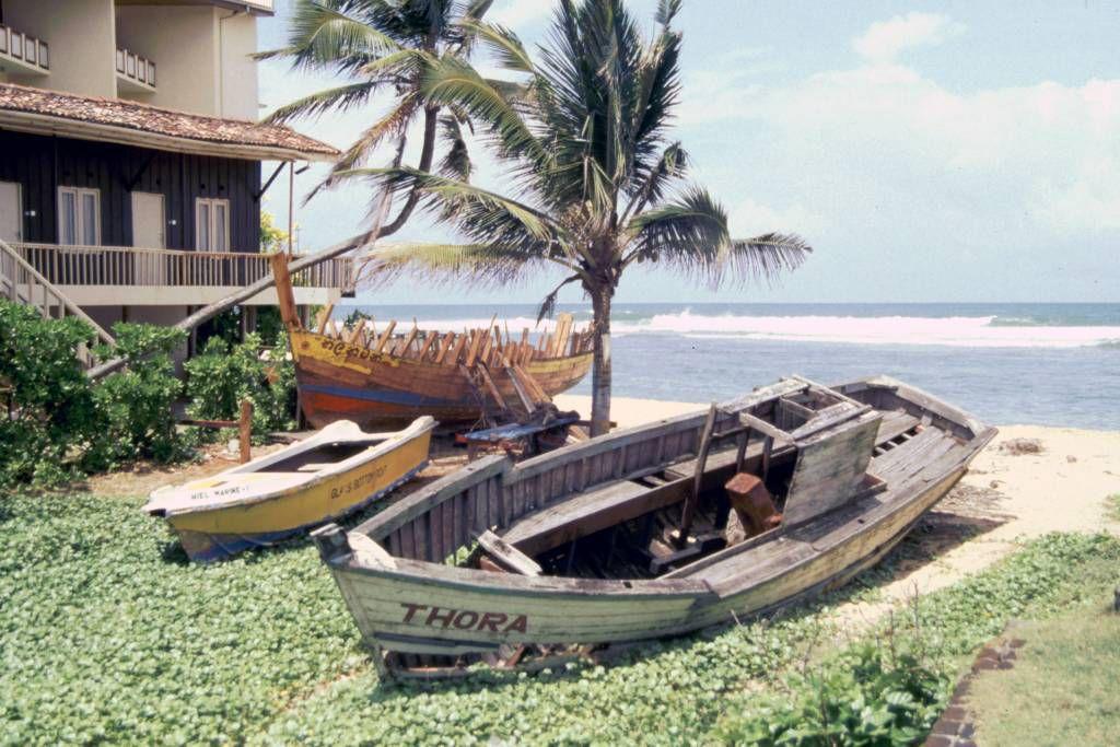 Hikkaduwa, Fischerboote alt und neu im Bau