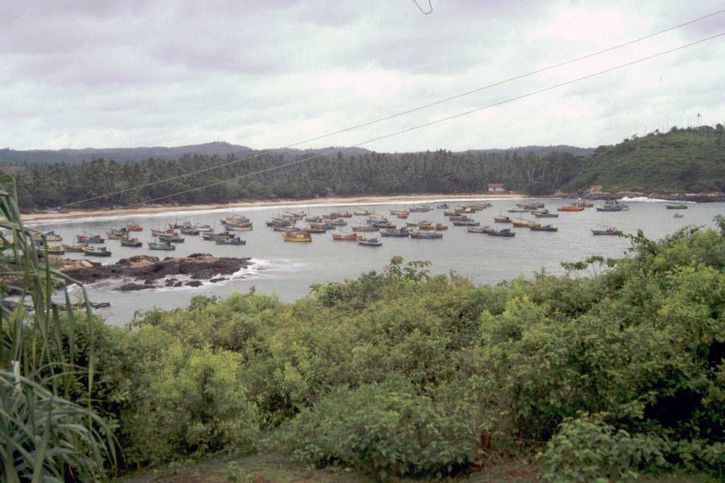 Dikwella, Fischereihafen