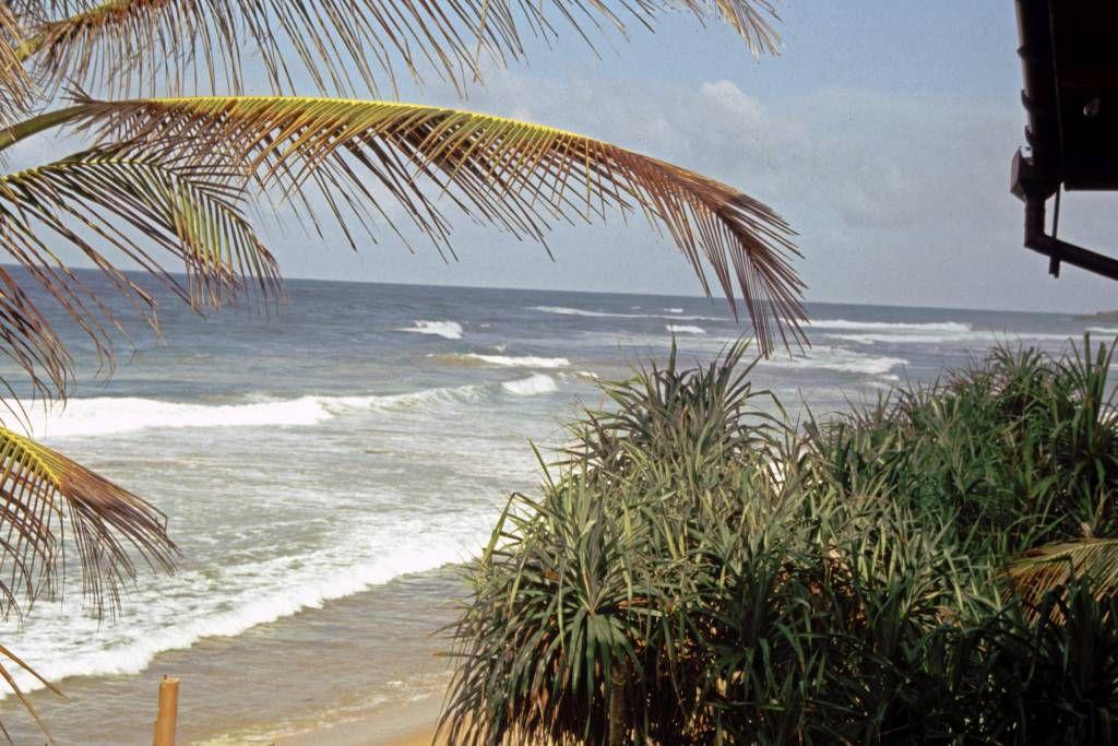 Hikkaduwa, am Strand
