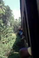 Im Zug zwischen Koggala und Galle