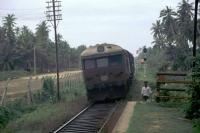 Koggala, ein Zug kurz vor dem Bahnhof