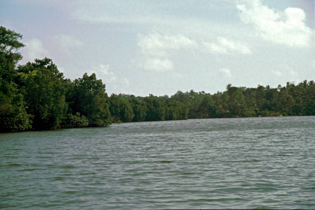 Bootsausflug auf dem Koggala See