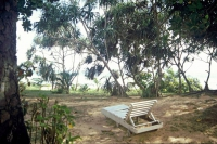 Koggala Beach Hotel, Garten