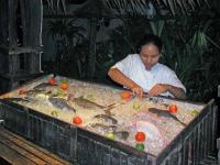 Fisch im Tropicana Resort, vor ...