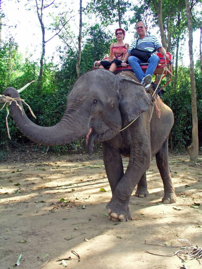 Sai Yok Elefanten Camp